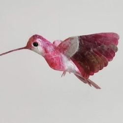 Kolibri cerise/silver