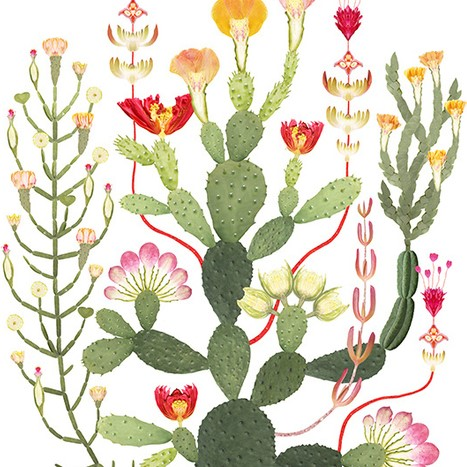 Poster Kaktusträd
