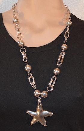 Fräscht halsband med stjärna