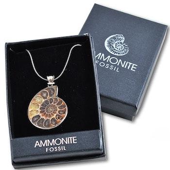 Halsband med Ammonitefossil från Madagaskar