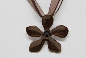 Halsband, brun med brun rem
