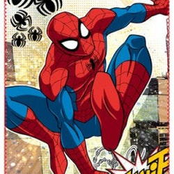 Marvel filt - Spiderman 1