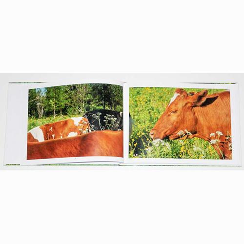 Fotobok Bruksdjur i Natur