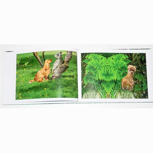 Fotobok Väsen och Djur