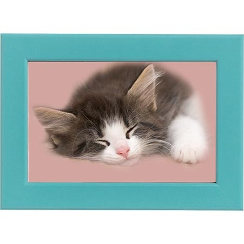 Sovande katt blå ram