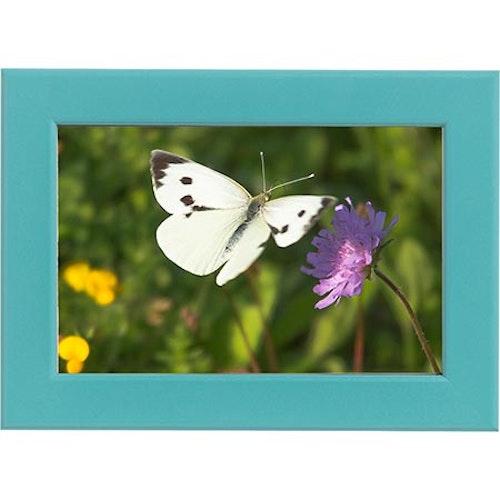 Tavla Fjäril och Blomma blå ram