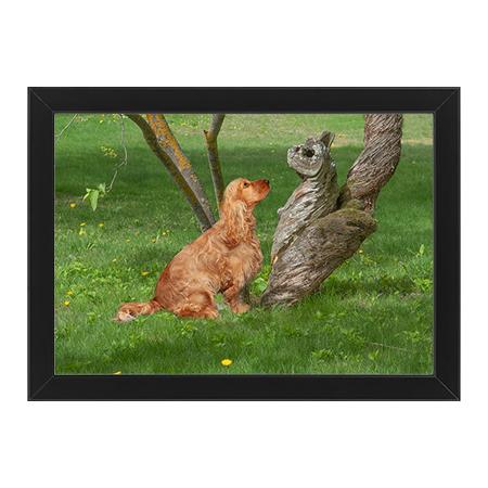 Hund talar med trädstamsväsen svart ram
