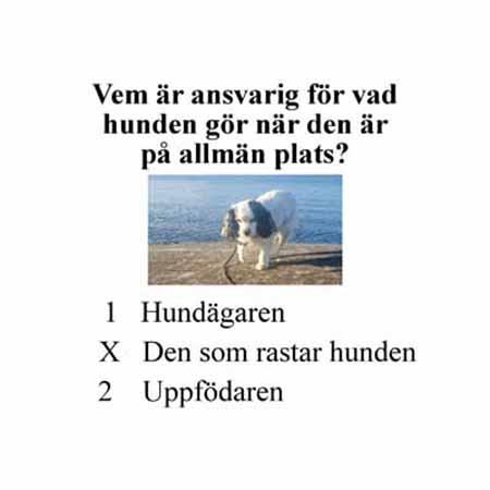 Tipsfrågor Hund