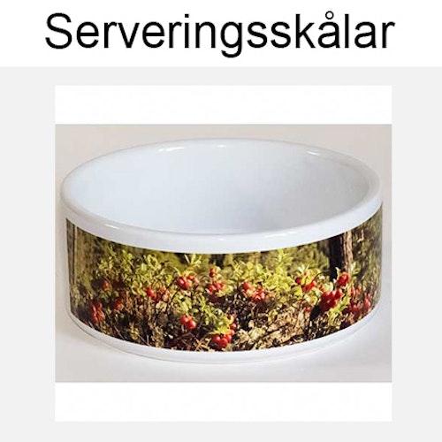 Serveringsskålar