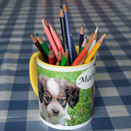 Färgglada muggar med ditt djur