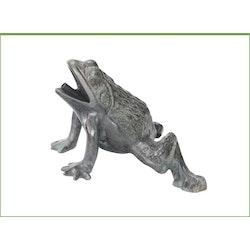 Fontängroda i grönpatinerad brons, sittande