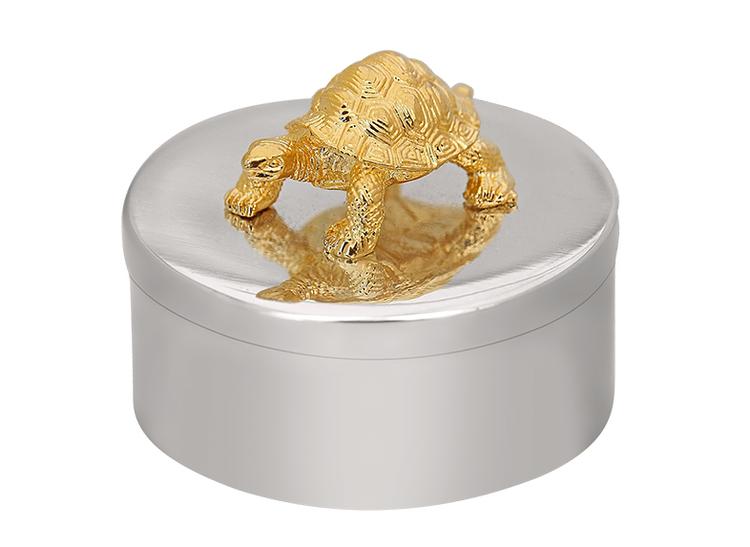 Ask i tenn, sköldpadda på locket