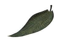 Fat, handmålad plåt, 67 cm, hårdlackat, mörkgrönt