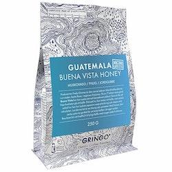 Guatemala Buena Vista Honey