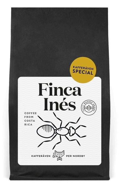 Finca Ines - Washed Geisha - Costa Rica - Kafferäven