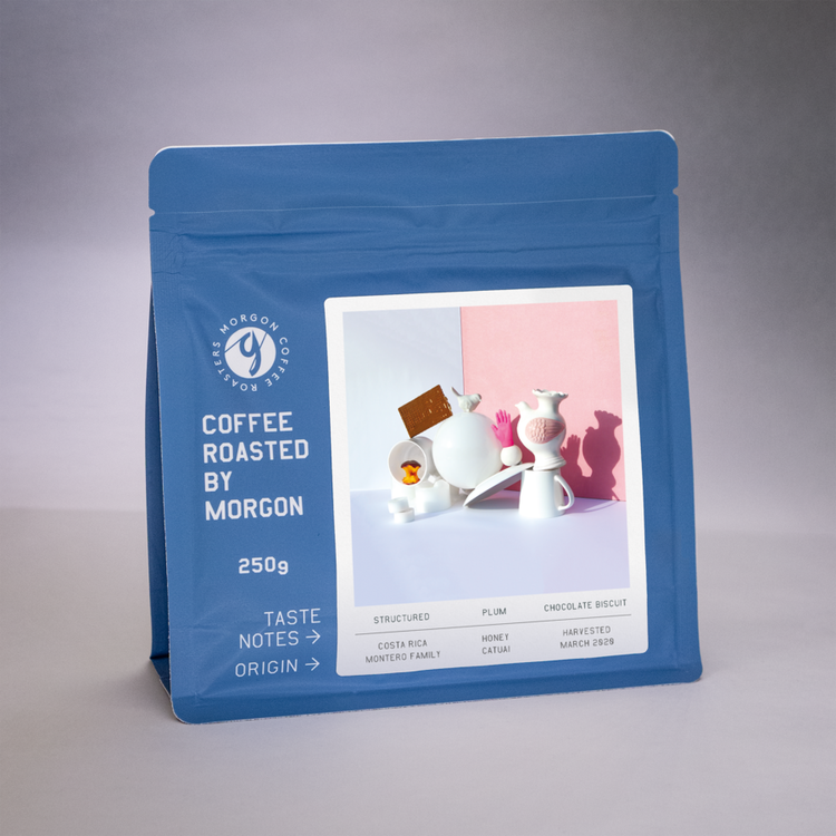 Montero Family - Costa Rica Tarrazu - Morgon Coffee Roasters