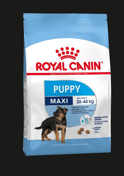 Royal Canin MAXI PUPPY, flera storlekar