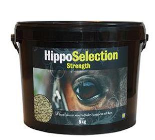 HippoSelection Success Caps