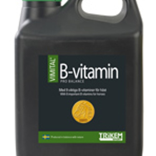 Vimital B-Vitamin 1000 ml