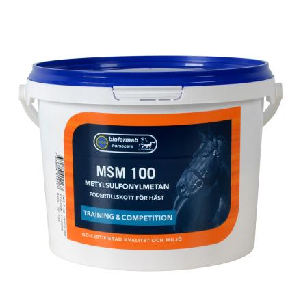 MSM 100