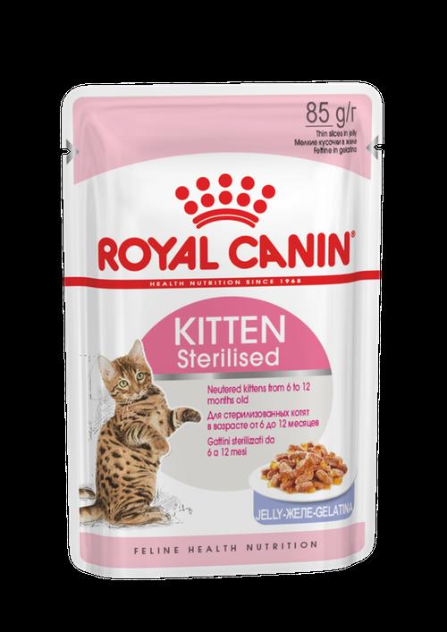 Royal Canin Kitten sterilised Jelly 85g