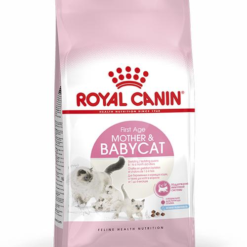 Royal Canin Mother & Babycat, flera storlekar