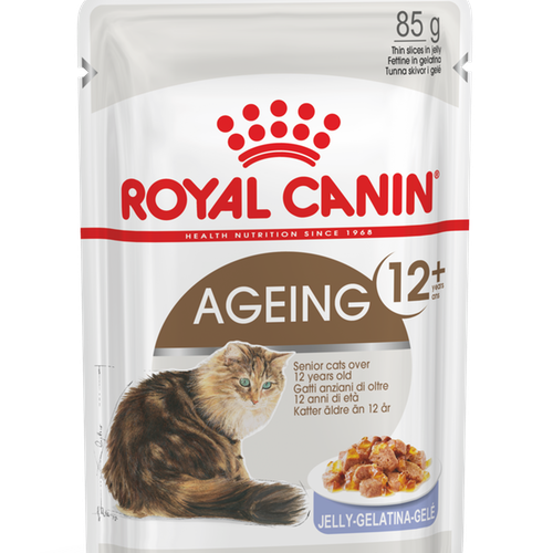 Royal Canin Ageing 12+ jelly 12pack*85g