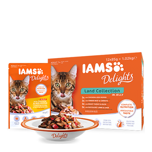 IAMS Delights Köttkollektion i gelé 85g