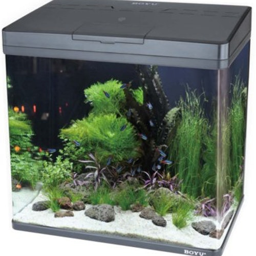 BOYU MS LED AKVARIUM SVART 45L 48x25x49CM
