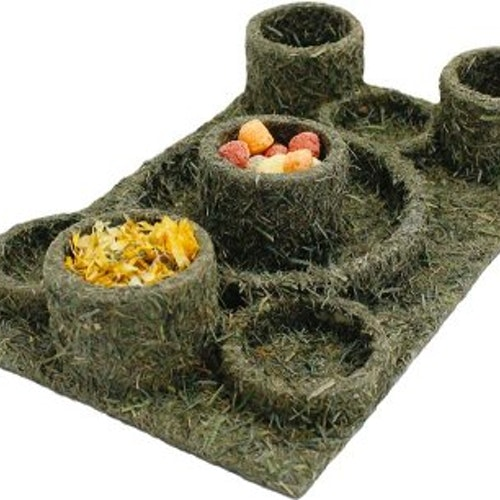 JR FARM FUN PARK 28x18x5CM 275GR