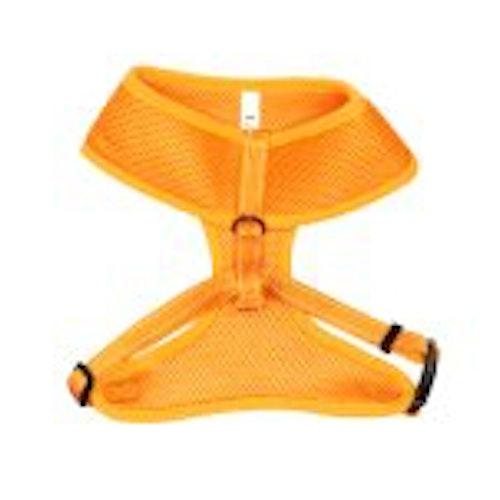 Meshsele Iris, orange