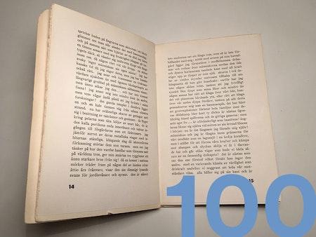 Lektörstjänst 100 sid.