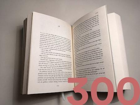 Lektörstjänst 300 sid.
