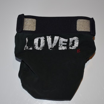 "gDiapers ""Love"" LE"