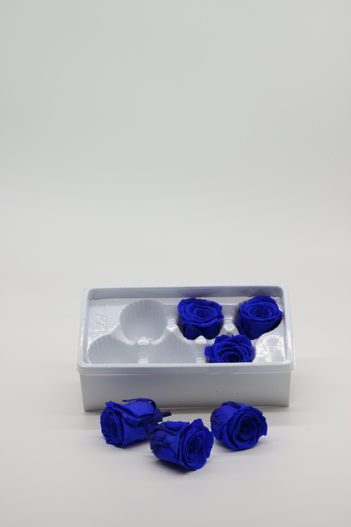 Evighetsros - Mörkblå - Egen design