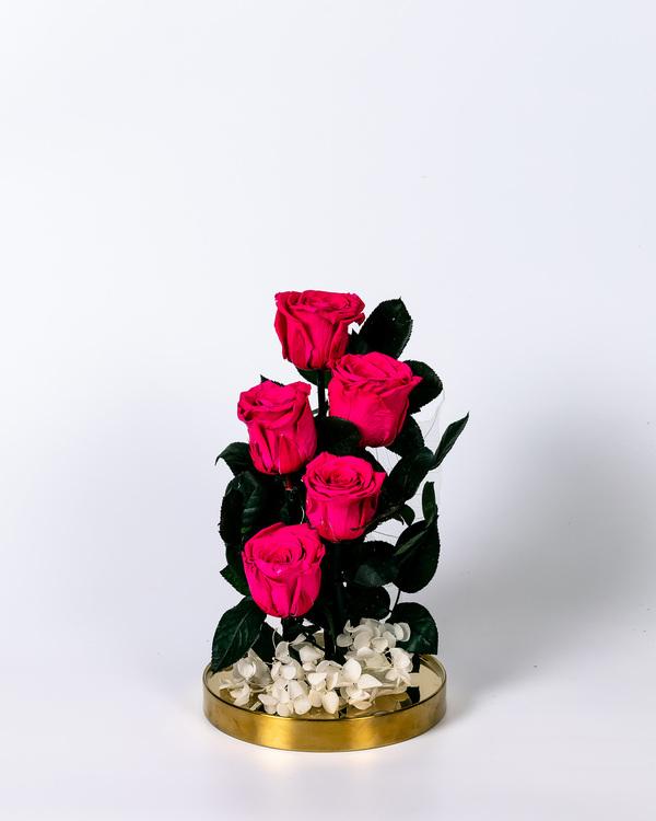Roskupa Stor - Rosa