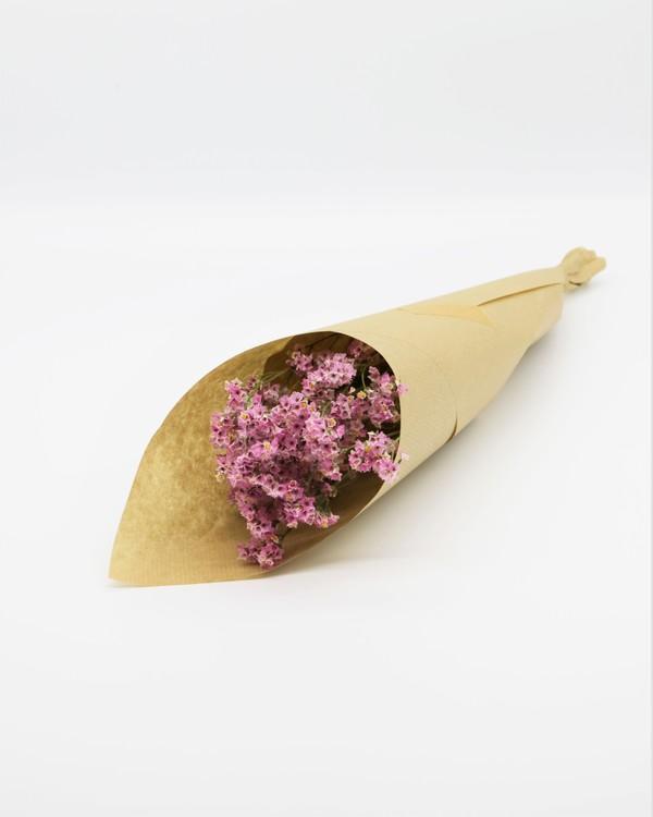 Torkade Limonium - Naturell rosa
