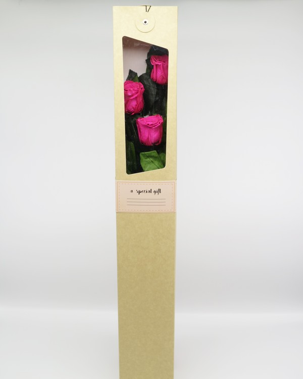 Evighetsros Giftbox  - Rosa