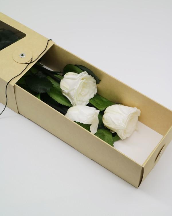 Evighetsros Giftbox  - Vit