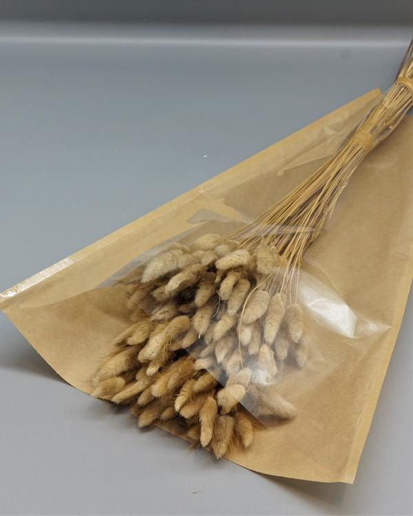 Lagurus 100 gram - Naturell