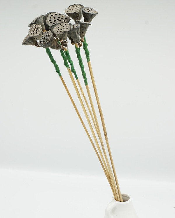 Lotus Mini x3 - Naturell - Inredningsdetaljer