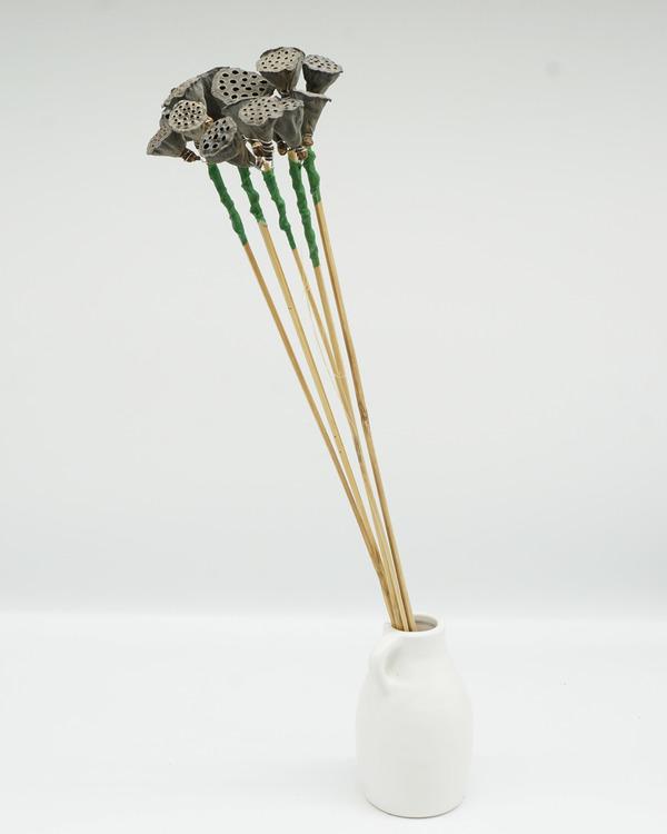Lotus Mini x3 - Naturell