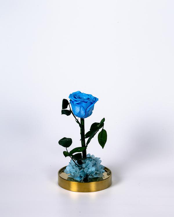 Roskupa - Blå - Present