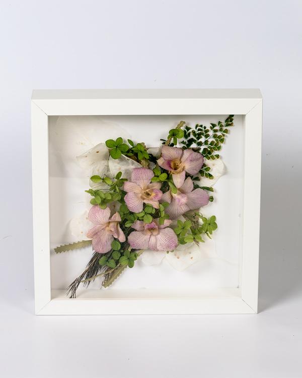 Blomram Orkidéer