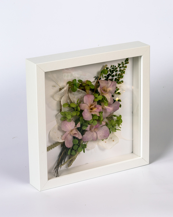 Blomram Orkidéer - Present