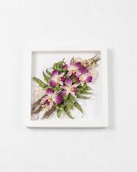 Blomram Orkidéer - Lila