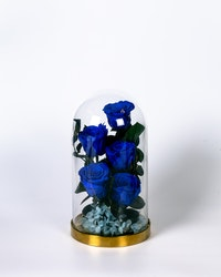 Roskupa Stor - Mörkblå
