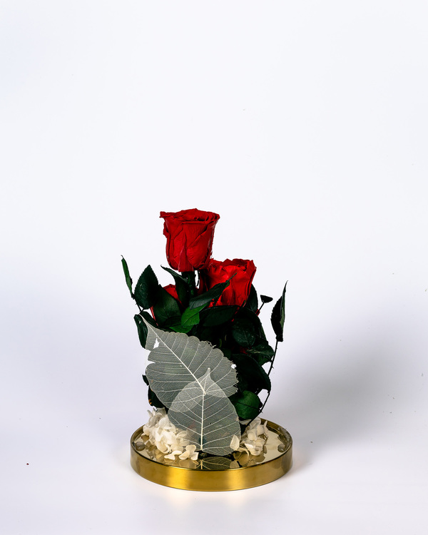 Konserverade blommor - Evighets blommor - För alltid - Stabiliserad - Florist - Roskupa - Ros Kupa
