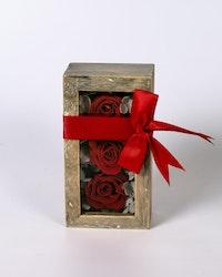 Mini Rosbox - Röd