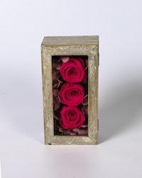 Mini Rosbox - Rosa